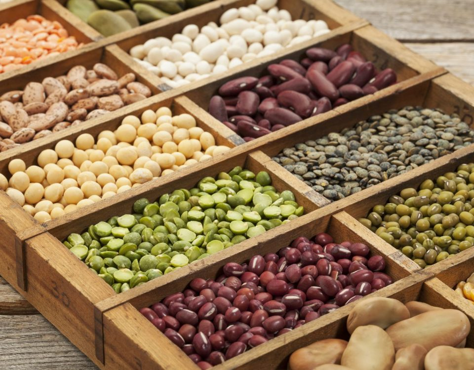 bigstock-seeds-legumes-beans44731063(1)